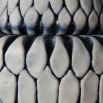 ceramics – 384